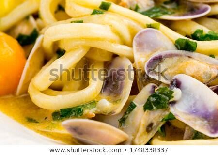 Clams, tellin seafood close up Stock photo © lunamarina