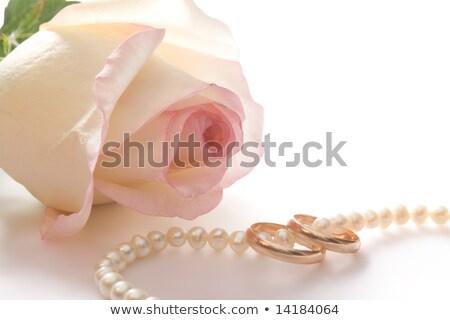 ダイヤモンド · ネックレス · バラ · 中心 · ピンクのバラ · 花 - ストックフォト © lunamarina