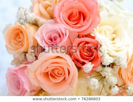macro · Rood · rose · wazig · groen · gras · liefde · natuur - stockfoto © lunamarina
