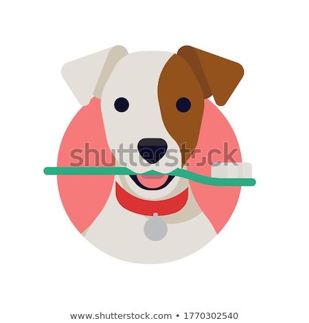 Wektora ikona psa guma Zdjęcia stock © zzve