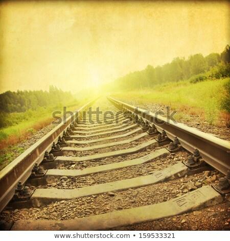 Idejétmúlt vasúti sinek vasút vonal ősz erdő Stock fotó © hraska