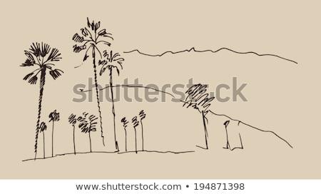 hollywood · szőlő · felirat · illusztráció · pálmafák · égbolt - stock fotó © lunamarina