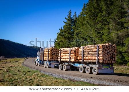 Pine Logs on Logging Trailer Stock photo © tainasohlman