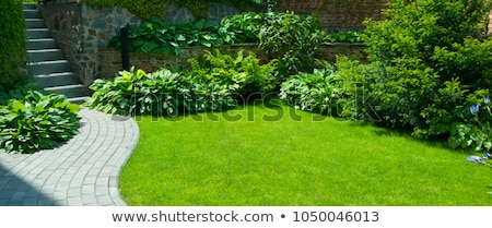 Garden stone landscaping Stock photo © Julietphotography