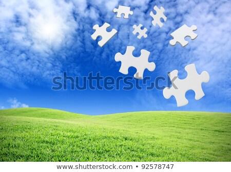 verde · vítreo · quebra-cabeça · ilustração · vetor - foto stock © derocz