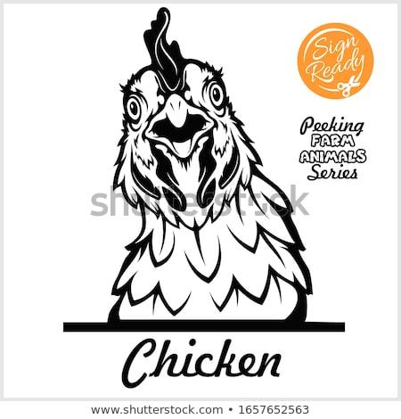 Bienvenue · poulet · illustration · cartoon · jaune · drôle - photo stock © fmuqodas