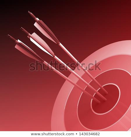 rojo · palabra · objetivo · flecha · blanco · diseno - foto stock © tashatuvango