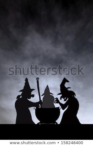Három főzet vektor rajz illusztráció nő Stock fotó © orensila