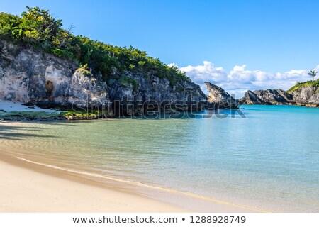 Bermuda Rock Formation Stock photo © arenacreative