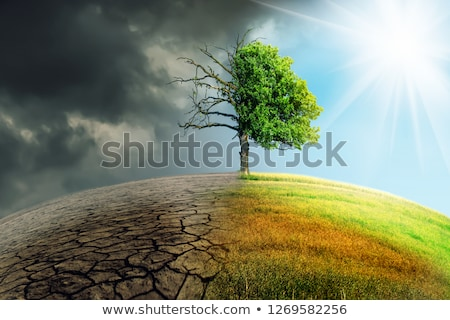 A Climate Change Concept Image. Landscape green grass and drought land  Stock photo © ichiosea