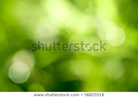 Abstract background. Green globe Stock photo © saransk