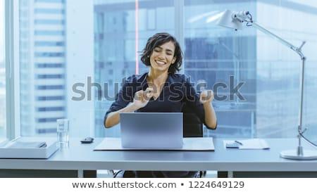 счастливым · деловая · женщина · используя · ноутбук · серый · компьютер · служба - Сток-фото © deandrobot