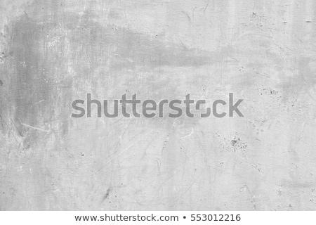 Rusztikus ipari téglafal fém redőny textúrák Stock fotó © stevanovicigor