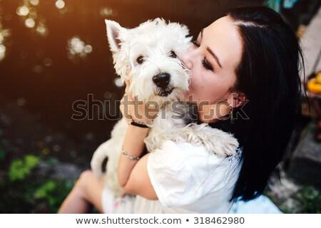 Zdjęcia stock: Dziewczyna · szczeniak · blisko · biały · psa