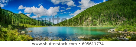 Stock photo: landscape with mountains trees and a river in front