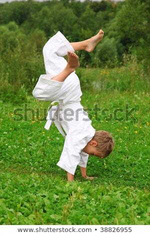 каратэ мальчика стойка на руках газона стороны ребенка Сток-фото © Paha_L