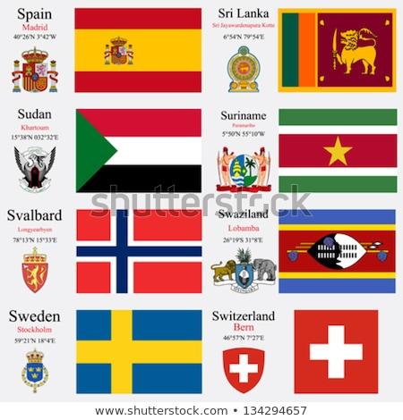 Zwitserland Swaziland vlaggen puzzel geïsoleerd witte Stockfoto © Istanbul2009
