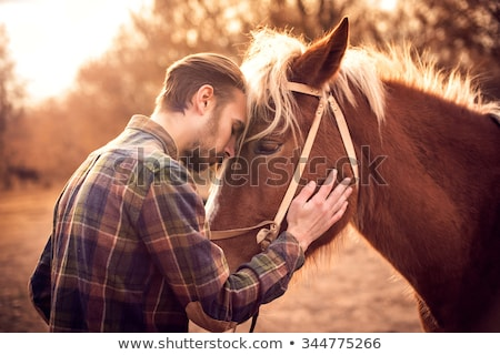 Horse and man Stock photo © zurijeta