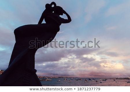 mermaid statue on the stone in sea at sunset stock photo © d13