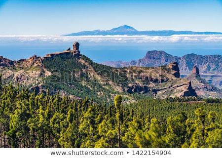 Gran Canaria, Caldera de Tejeda Stock photo © Tamara_K