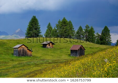 Old wooden barns in the Dolomites, Italy, Europe Stock photo © CaptureLight
