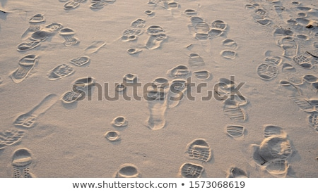 prints from various footwear on sand  Stock photo © ssuaphoto