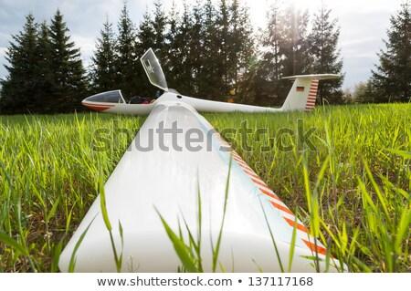 avião · nariz · grama · esportes · viajar · avião - foto stock © berczy04