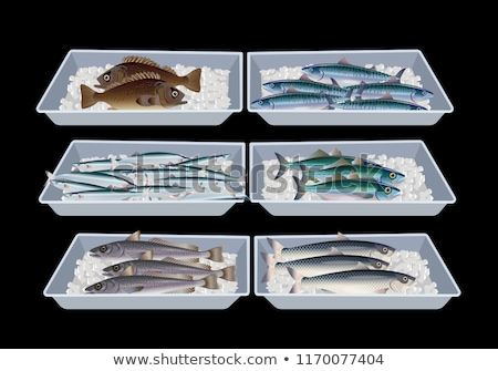 Different fish on ice for sale Stock photo © oliverfoerstner