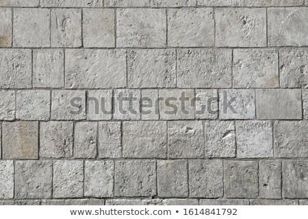 mech · kamień · bloków · ściany · starych · murem - zdjęcia stock © oleksandro