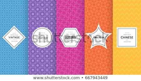 Vibrante teste padrão de flor vetor textura padrão cartaz Foto stock © SArts