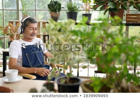 Hombre relajante invernadero música tecnología paz Foto stock © IS2