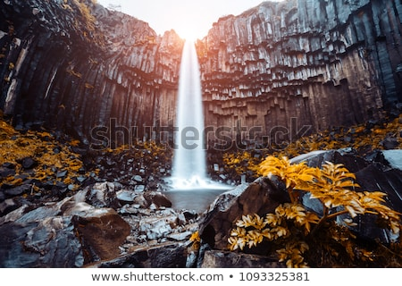 Great view of Svartifoss waterfall. Location Skaftafell National Stock photo © Leonidtit