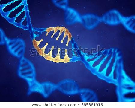 Gène mutation génétique code 3D Photo stock © user_11870380