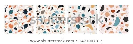 Minerały kamienie kolekcja diament skał Zdjęcia stock © robuart