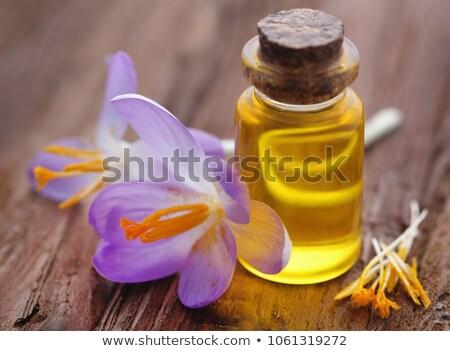 желтый Крокус шафран белый цветок Сток-фото © bdspn