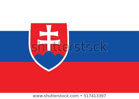 Slovakya bayrak beyaz dizayn arka plan mavi Stok fotoğraf © butenkow