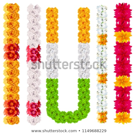 Set indian flower garland mala isolated on white Stock photo © orensila