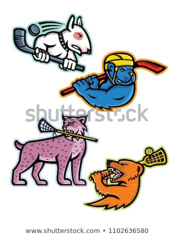 Bobcat or Lynx Lacrosse Mascot Stock photo © patrimonio