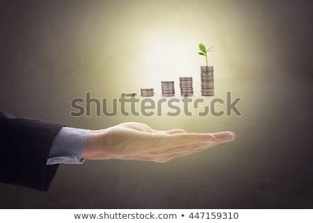 pénz · növény · kéz · tart · érme · természet - stock fotó © snowing