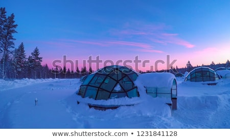 Winter twilight landscape with a snow igloo Stock photo © Kotenko