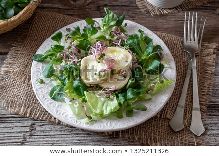 Salad with marinated goat cheese and fresh radish sprouts Stock photo © madeleine_steinbach