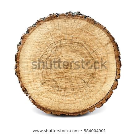 старые · выветрившийся · древесины · кольца · текстуры · крест - Сток-фото © boggy