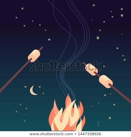 şenlik ateşi renk örnek şömine kamp ateşi kamp Stok fotoğraf © barsrsind