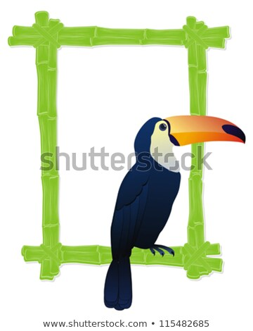 Vector Bamboo Frame with Tropics Birds Stock photo © dashadima
