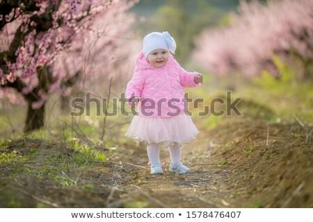 子 自然 早い 春 開花 バラ ストックフォト © ElenaBatkova