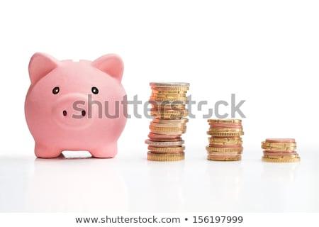 spaarvarken · vallen · munten · roze · sleuf · geïsoleerd - stockfoto © dacasdo