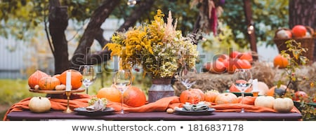 vintage table setting in the garden stock photo © happydancing
