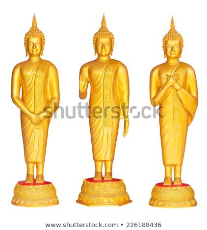 beautiful image of three standing buddha stock photo © nuttakit