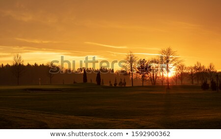 Сток-фото: Golf Green With Winter Orange Sunset Sky
