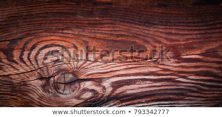 abstract wood texture like tiger pattern stock photo © taviphoto
